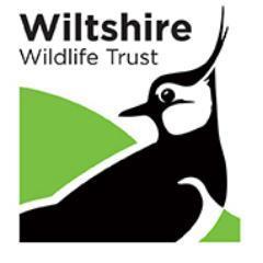 Exhibition Highlights: Wiltshire Wildlife Trust